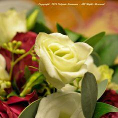 Hochzeitsimpressionen Posted on 2013/12/06 by Stefanie Neumann