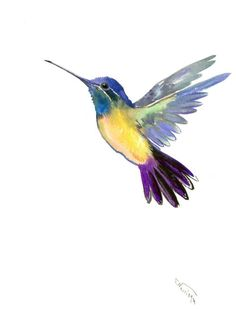 Buy Hummingbird, Watercolor by Suren Nersisyan on Artfinder. Discover thousands of other original paintings, prints, sculptures and photography from independent artists.