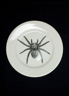Spider Dinner Plate