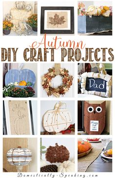 12 Autumn DIY Projects that you'll want to make this fall! Great crafts with pumpkins, leaves, owls and burlap to decorate your home for Autumn.
