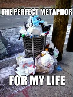 Overflowing trash can: the perfect metaphor for my life. Original Memes, Funny Stuff, My Life, Organization, Canning, Funny Things, Getting Organized, Organisation, Home Canning
