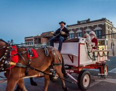 Horse-drawn carriage - Holiday Downtown Event