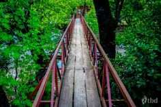 Escape to Olympos Railroad Tracks, Traveling, Stairs, Viajes, Stairway, Staircases, Trips, Ladders, Travel