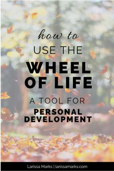 The Wheel of Life Tool