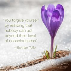 """""""You forgive yourself by realizing that nobody can act beyond their level of consciousness."""" ~Eckhart Tolle Please Feel Free To 'Re-pin' & Share This Week's Present Moment Reminder."""
