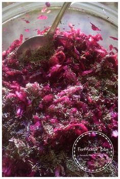 Fermentált kakukkfüves cékla-zeller saláta - FerMentor Blog Zeller, Cabbage, Keto, Vegetables, Blog, Veggies, Vegetable Recipes, Blogging, Cabbages