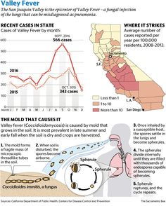 As Valley Fever cases spike, experts say awareness is key | The Sacramento Bee