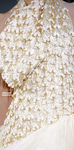 Christian Dior Fall-09 Haute Couture Details
