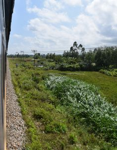 Travelling by train in Vietnam, travelling to Vietnam on a budget, trains views in Vietnam