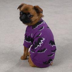 BAT Dog Puppy T Shirt Tee Halloween Costume Purple Glitter Miscellaneous Sizes #ZackandZoey