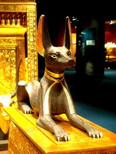 Anubis from Tutankhamun´s tomb, Egyptian Museum, Cairo, Egypt. Ancient Egyptian Artifacts, Ancient Egypt History, Ancient Aliens, Ancient Greece, Anubis, Old Egypt, Egypt Art, Cairo Egypt, Kairo