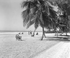 View of the beach - Sanibel Island, Florida   Date 1955