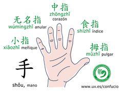 ¿Sabéis cómo se llaman los dedos en chino? ¡Hoy os dejamos una diapositiva estos nombres! 无名指 anular (Wúmíngzhǐ) 中指 corazón (zhōngzhǐ) 小指 meñique (xiǎozhǐ) 食指 índice (shízhǐ) 拇指 pulgar (mǔzhǐ) Más diapositivas en Pinterest --> https://www.pinterest.com/confuciouv/ Más diapositivas en Instagram --> https://www.instagram.com/confuciouv/ #chino #mandarin #dedos #vocabulario #manos #idiomas #nombres