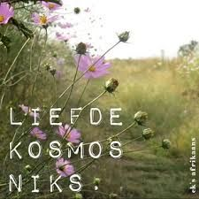 Liefde kosmos niks.Oulik net ons taal werkaats die regte boodskap. Pretty Quotes, Cute Quotes, Funny Quotes, Old Wood Signs, My Happy Ending, Sea Quotes, Afrikaanse Quotes, Cosmos Flowers, Bible Pictures