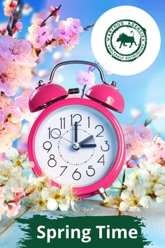 """It's Spring and time to start afresh…  """"Blossom by blossom the spring begins."""" — Algernon Charles Swinburne  #springtime #moveandgroove Spring Ahead, Spring Time, Clocks Forward, Solar Equipment, Butterfly Pea, Daylight Savings Time, Buying A New Home, First Time Home Buyers, Infographic"""