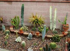 The Garden Conservancy Pasadena Garden Tour Cacti Gardens and