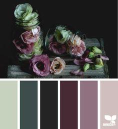 Feathered palette   design seeds   Bloglovin'