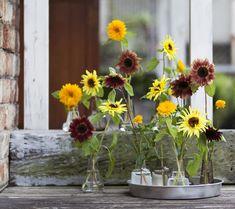Flower Vase - フラワーベース