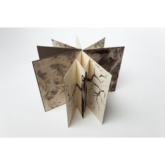 d'Alfa a Omega - Libro de Artista Maria Pujol
