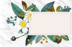 Thumbnail Youtube, Flower Invitation, Nature Images, Free Illustrations, Vintage Flowers, Animal Tattoos, Funny Art, Wallpaper Backgrounds, Design Elements