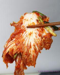 배추겉절이 황금레시피 알배기로 쉽게 타다닥! : 네이버 블로그 Korean Dishes, Korean Food, K Food, Instant Pot Pressure Cooker, Kimchi, Food Plating, Bread Recipes, Food To Make, Food And Drink