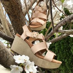 Caslynn Reece by Clarks  #wedges #shoes #fashion #eslavidashoes
