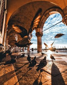 Stunning photo from Stunning photo from a sunrise miss by Piazza S. Marco in Venice by Bennett Sell-Kline Sunset Photography, Travel Photography, Photography Tips, Mecca Kaaba, Sunset Pictures, Sunset Pics, Islamic Pictures, Venice Italy, Terra