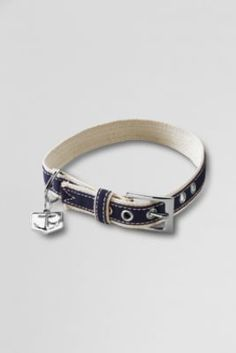 Canvas Pet Collar from Lands' End