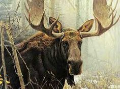 12-Year Old Boy Saves His Sister from Moose Attack Using World of Warcraft…