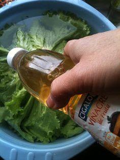 Diva....Like a Lady: Como higienizar verduras cruas