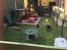 Rabbit housing - tunnels