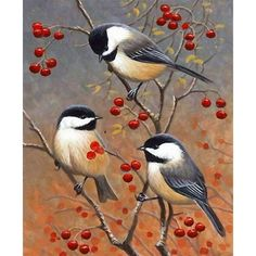 Christmas Acrylic Painting 8 40 Simple and Easy Landscape Painting IdeasAbstract Art, Cloud Painting Print , Cloud Print ,…Original Oil Painting Modern Large Wall Art Decor… Bird Pictures, Pictures To Paint, Watercolor Bird, Watercolor Paintings, Bird Painting Acrylic, Bird Paintings On Canvas, Orange Painting, Wildlife Paintings, Tole Painting