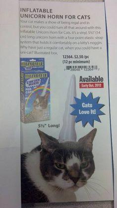 Cats love it!