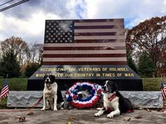 Thank you for your service both human and canine.