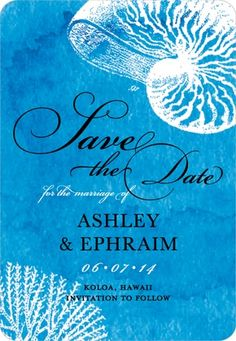 Cute marine-life save-the-date design. :)