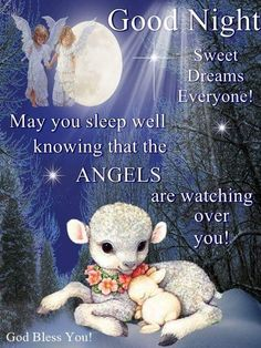 Good Night my friend time to relax and enjoy some T. Sweet dreams and God bless you and yours! Good Night Angel, Good Night Prayer, Cute Good Night, Good Night Blessings, Good Night Sweet Dreams, Good Night Image, Good Morning Good Night, Evening Greetings, Good Night Greetings