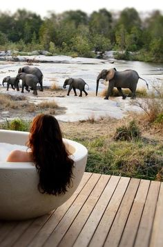 Spotting wildlife from a bathtub at Londolozi Granite Suites - Kruger National Park, South Africa https://jesseyjay9.wordpress.com/2015/08/26/10-best-romantic-honeymoon-places-in-africa/