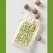 In honor of Earth Day, I'm sharing my eco-chic secret: It's basically how to fake a green thumb for those who are so inclined. My tip? Invest in seed bombs.