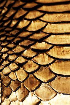 LANVIN Gold Phyton Skin Bag.