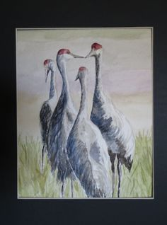 Watercolor Sandhill Cranes