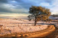 Frosty Road by David Gibbs