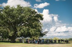 Guests gathering under the Oaktree at the Sydney Polo Club for a wedding ceremony