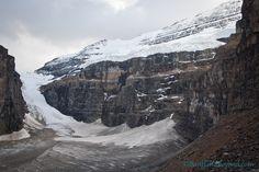 Plain of six glaciers tea house trail