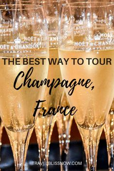 Find out what you should look for in the best day tour to Champagne, France. How is champagne made, and what are the best champagne houses to visit? All the bubbly info here. Things to do in Champagne, things to do in France, Frace travel tips! Best Champagne, Champagne Taste, Champagne Images, Champagne Glasses, Best Vacation Destinations, Best Vacations, Vacation Ideas, Champagne Region France, Paris France Travel