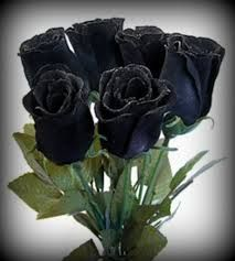 halfeti turkey black roses - Buscar con Google