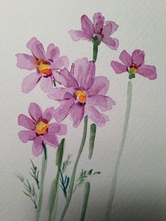 Dainty Cosmos Watercolor Card I love the airy dainty blooms of the Cosmos plants. They have a feel of a wildflower to me. This card is painted on