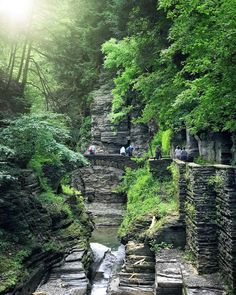 This Secret Waterfall Swimming Hole Is Just A Few Hours Away From Toronto - Narcity Places To Travel, Places To See, Swimming Holes, Canada Travel, Once Upon A Time, Ontario, Toronto, Gem, Waterfall