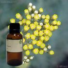 Helichrysum Essential Oil (100% Pure & Natural) SHIPS FREE
