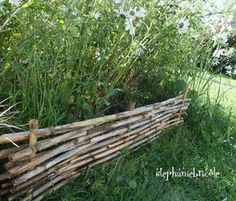 Bordure noisetier avec tige | Gardens, Bamboo fence and Garden fencing