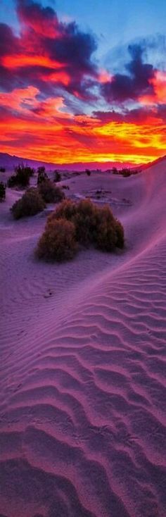 Sunrise at Mesquite Flats sand dunes - Death Valley National Park, California, USA.  Photo: waltersolis google+